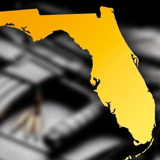 Florida's Semi-Auto Ban Petition Ballot is Null & Void +