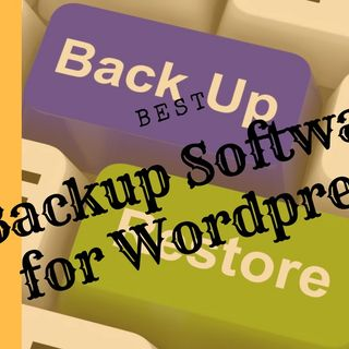 What Data Are Stored Using Backup Softwares Of WordPress
