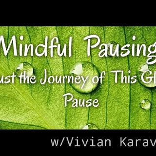 INTEGRATIVE MINDFULNESS PRACTICE -TRUST THE Journey Of This Global Pause !!!