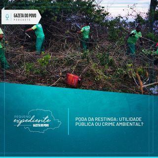 Pequeno Expediente #104: poda da restinga é crime ambiental ou utilidade pública?