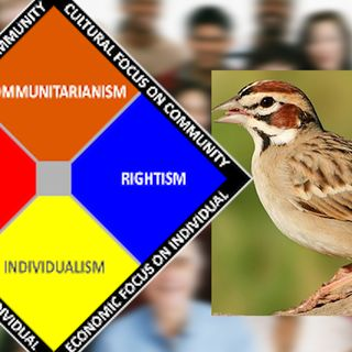 The virus and communitarianism with Lark in Texas