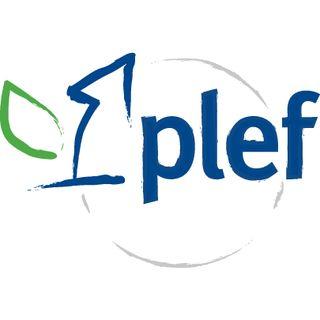 Green News PLEF n.2 Giugno 2020