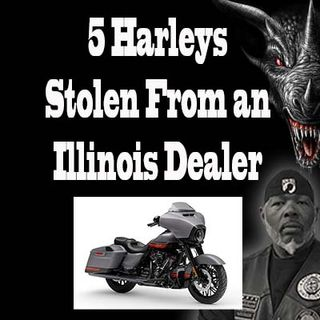 5 Harleys Stolen From an Illinois Dealership