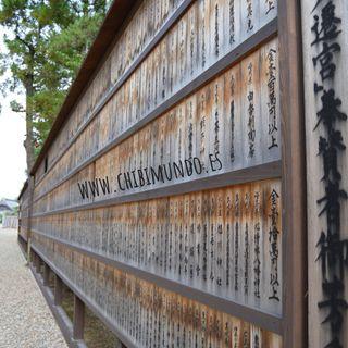 Tu viaje a Japon con Odigo