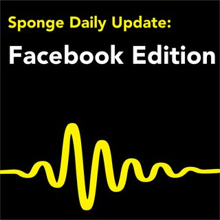 Facebook Daily News by Sponge