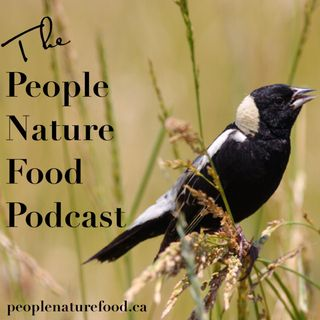 Episode 10: Jackie, Anne, Cati, Krista and Paul Discuss Their Plans To Grow Veggies