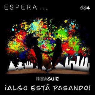 4. Nisaguie