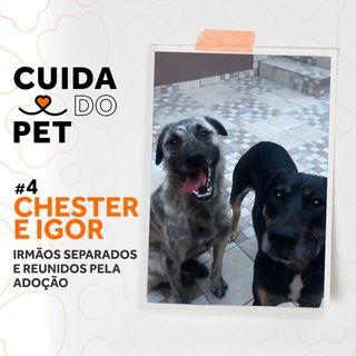 #4 Chester e Igor | Irmãos separados e reunidos pela adoção