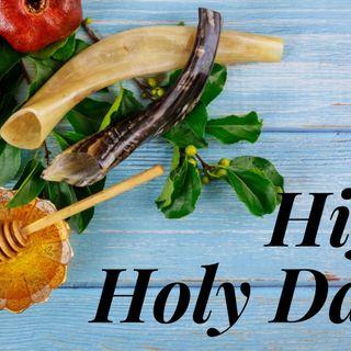 The 7 High Holy Dayz