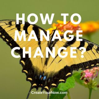 989 How Do You Manage Change?