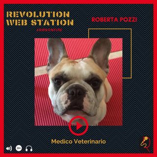 INTERVISTA ROBERTA POZZI - MEDICO VETERINARIO ESPERTO IN FISIOTERAPIA E RIABILITAZIONE E AGOPUNTURA VETERINARIA
