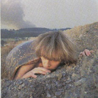 Pastime Paradise - (The First) Julian David Cope