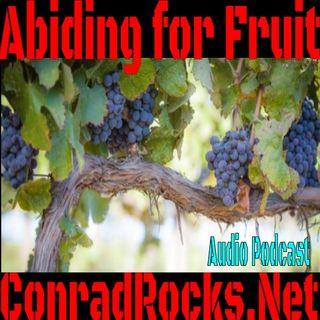 Abiding for Fruit