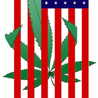 Medical Marijuana Radio - 08/25/15