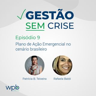 Plano de Ação Emergencial no cenário brasileiro