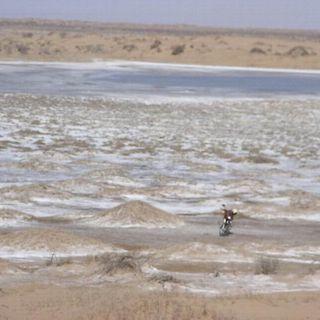 Sabbia più cellulosa: così la Cina batte la desertificazione