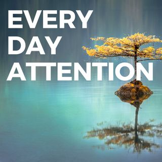 Ep 181 - Meditation and the Science of Attention