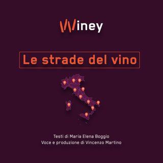 S1 Episodio 7 - La Campania: il vino per istinto