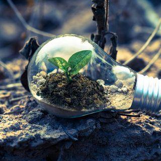 19/09/19 - O que você faz no seu dia-a-dia pra ajudar o meio ambiente?