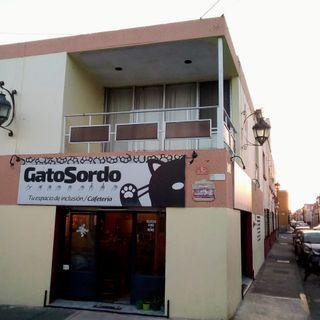 VOCES 22 marzo 2019. Que es el GATO SORDO? y DIA INTERNACIONAL del AGUA.