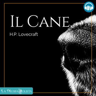 IL CANE • H P Lovecraft ☎ Audioracconto ☎ Storie per Notti Insonni ☎