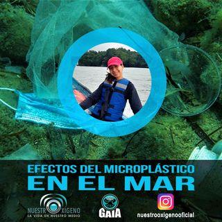 NUESTRO OXÍGENO Efectos del microplástico en el mar - Ing. Daniela Vásquez Molano