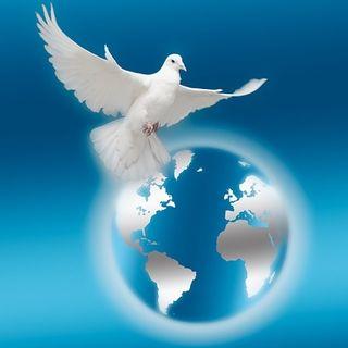 ¿Paz en medio del caos?