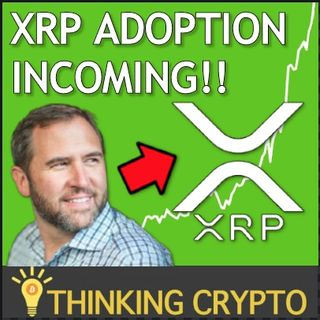 XRP & Ripple Adoption Timeline Back On Track with Central Banks, IMF, BIS & World Bank!