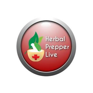 Medicinal Honey and St. John's Wort with Herbal Prepper on PBN
