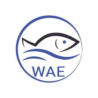 WAEofFishing Podcast