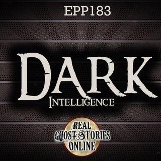 Dark Intelligence | Haunted, Paranormal, Supernatural