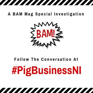 "Ep 1: #PigBusinessNI - Incentive Scheme Dubbed ""New RHI"" Revealed"