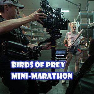 Byte Birds Of Prey Mary Elizabeth Winstead and Jurnee Smollett- Bell