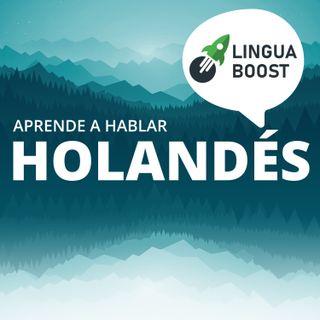 Aprende holandés con LinguaBoost