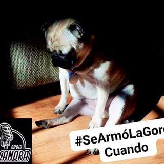 Episodio 49 #SeArmóLaGordaCuando...
