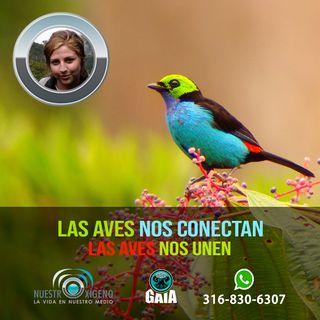 NUESTRO OXÍGENO Las aves nos conectan las aves nos unen - Blga Noemí Moreno