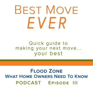 Ep 3 Flood Zone - What Home Owners Need To Know
