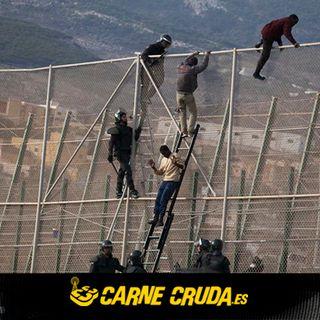 Carne Cruda - Control migratorio: quién gana, negocio millonario (#763)