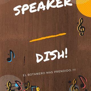 Speaker Dish Spot