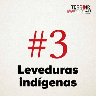 TBP #3 Leveduras Indígenas