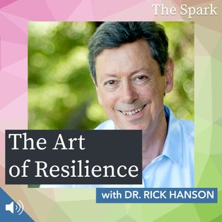 The Spark 008: The Art of Resilience with Dr. Rick Hanson