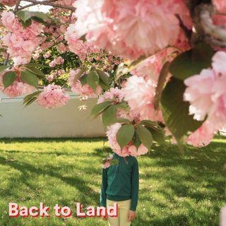 BACK TO LAND