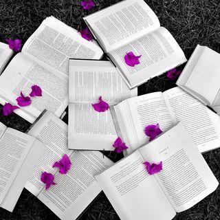 Feria del Libro K'ah óolal