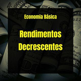 Economia Básica - Rendimentos Decrescentes - 17