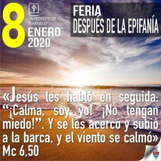 Homilía 8 Enero 2020 - La vida cristiana no es sólo esfuerzo de la voluntad