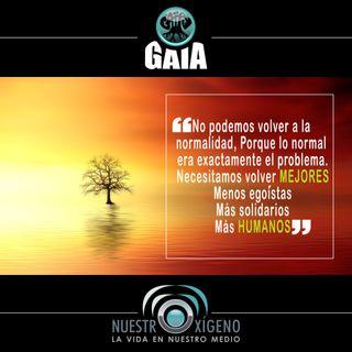 NUESTRO OXÍGENO Valoremos la naturaleza - Juan José Gutiérrez Ramírez
