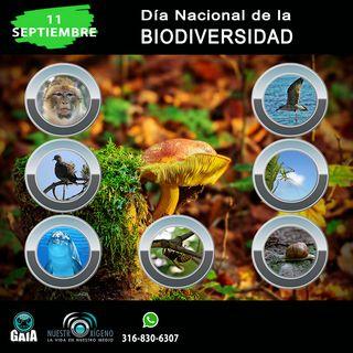 NUESTRO OXÍGENO  11 de sept. Día nacional de la biodiversidad
