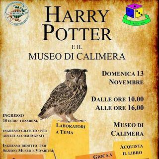 Harry Potter ed il Museo di Calimera