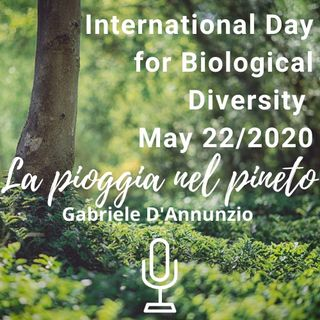 "International Day for Biological Diversity - May 22/ 2020: Reading ""La pioggia nel pineto"" (G. D'Annunzio, 1902)."