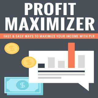 Profit Maximizer 2